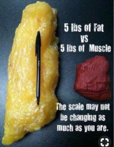 Difference between 5lbs of fat vs 5lbs of muscle